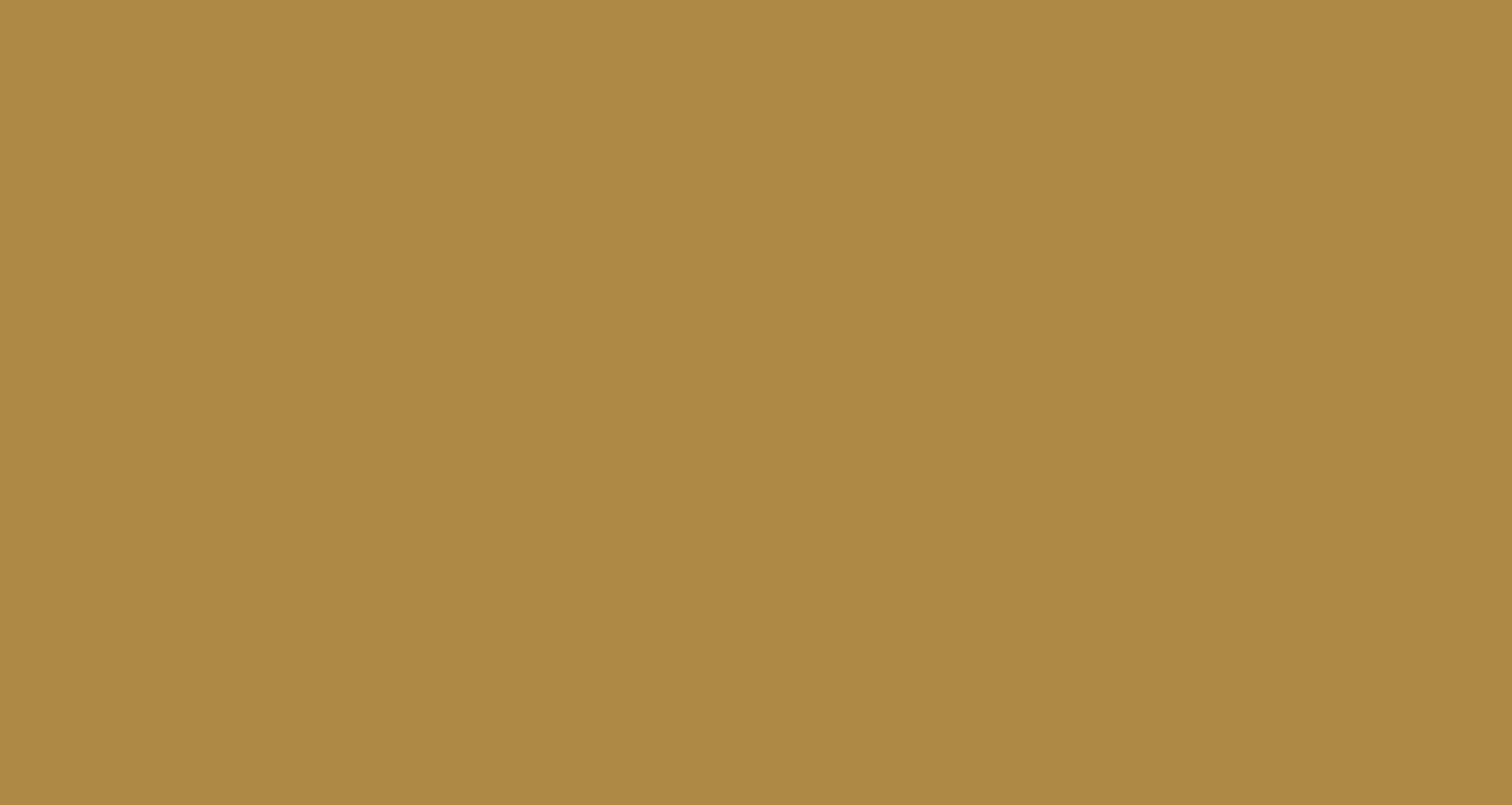 Antonia Butrón Empanadería